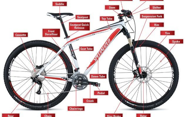 Mountain Bikes What Are The Different Types Cyclodelic